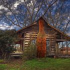 Dogtrot by phenson425