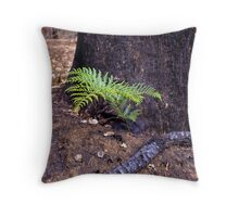 Regrowth after fires Throw Pillow