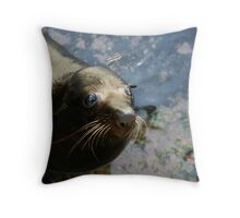 Eager Seal Throw Pillow