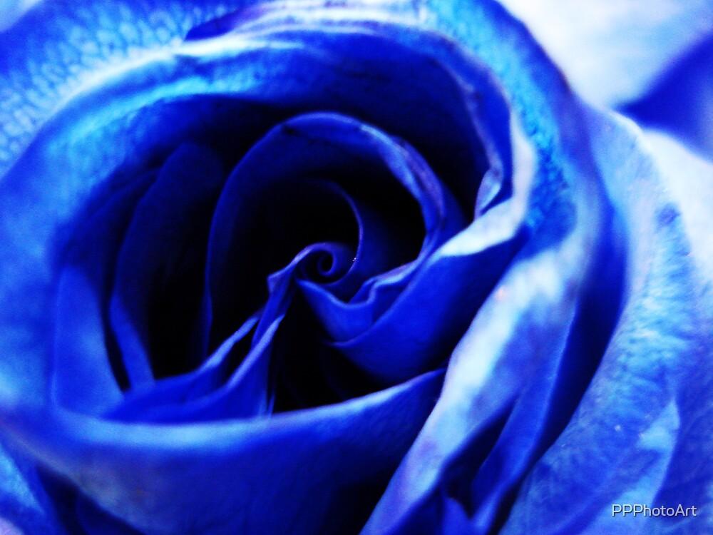 Very blue by PPPhotoArt