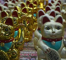 Cats in Chinatown, Singapore by Leigh Penfold