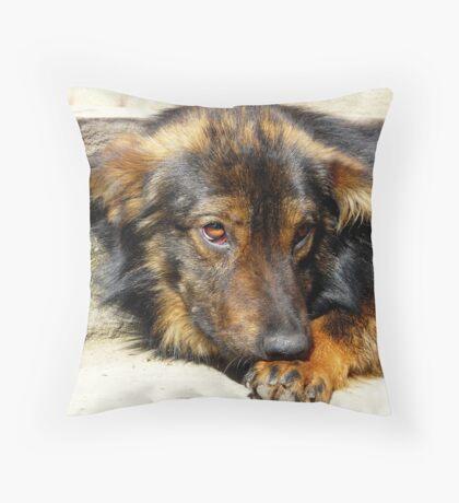Homless Throw Pillow