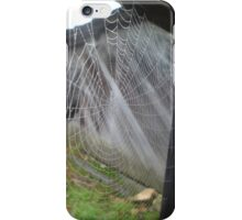 So The Spider Caught The Fly iPhone Case/Skin