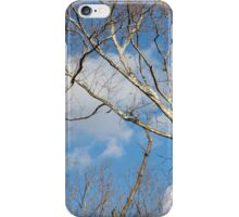 Tree top case iPhone Case/Skin