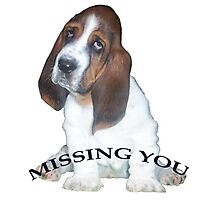 Missing You, from Barney Photographic Print