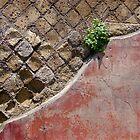 Pompeii fixer-upper  by David Roberts