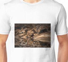 Iguazu - On the Rocks Unisex T-Shirt