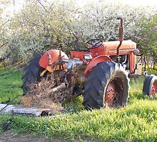The old Massey by PDWright