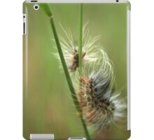 Almost Dreamy... Fire Worm From The Free State, South Africa iPad Case/Skin