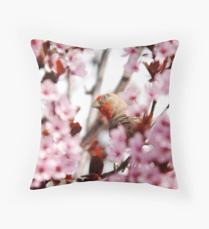 Finch in  Plum Tree Throw Pillow