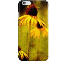 Yellow Coneflower - Oklahoma City Zoo - 2011 iPhone Case/Skin