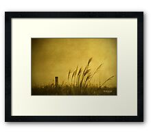 Land of Stillness Framed Print