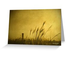 Land of Stillness Greeting Card