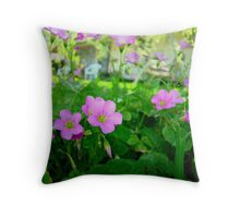 Front Yard Clover Flowers Throw Pillow