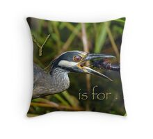 Y is for . . . Throw Pillow