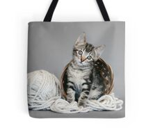 Yarn Tabby Tote Bag
