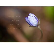 We accept the love we think we deserve Photographic Print