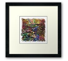 The Atlas Of Dreams - Color Plate 102 Framed Print