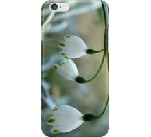 "Pure... ""Snowflakes"" (Leucojum Aestivum) Free State, South Africa iPhone Case/Skin"