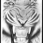 Tiger by Juanita Bishop