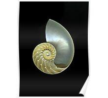 Nautilus Poster
