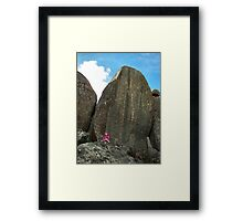 Amongst the Giants Framed Print