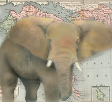 Elephant Map Design Illustration by Katiewassdesign