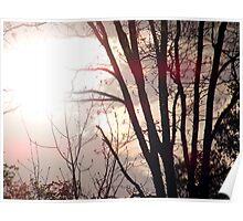 sunspots Poster