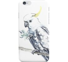 Taste For Lavender iPhone Case/Skin