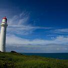 Split Point Lighthouse - Aireys Inlet - 1 by Richard Heath