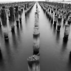 The Skeleton of Princes Pier by Greg McMahon