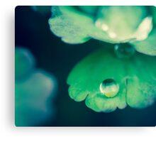 Droplet Canvas Print