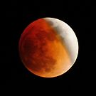 Lunar Eclipse by Mark Bolen