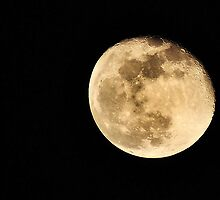 Cold December Moon by Mark Bolen