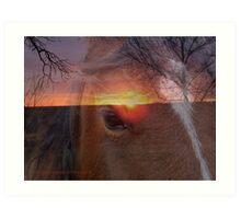 Equine Sunrise Art Print