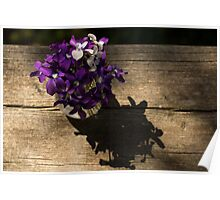 A Fragrant Bouquet of Miniature Spring Violas - Can You Smell Them? Poster