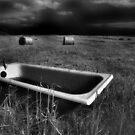 Bath and Bog Rolls by ragman