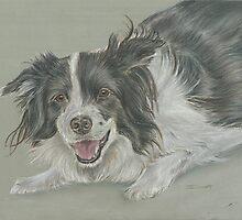 Collie dog pastel portrait by jdportraits