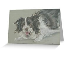 Collie dog pastel portrait Greeting Card