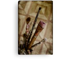 tools of painter Canvas Print