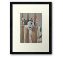 Cat pastel portrait  Framed Print