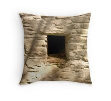 the way it used to be ... Throw Pillow