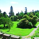 Armadale Castle Gardens by Tom Gomez