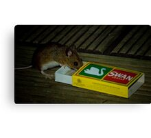 Average Contents One Mouse Canvas Print