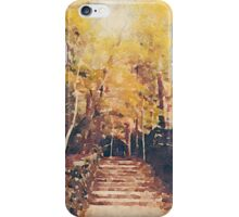 Stone Path Through a Forest in Autumn iPhone Case/Skin