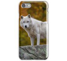 Watching you... iPhone Case/Skin