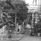 Bangkok electric by Leia