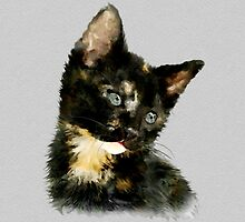 Susie: Black and tan Kitten by Bamalam Art and Photography