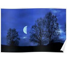 Moon between Trees - JUSTART © Poster