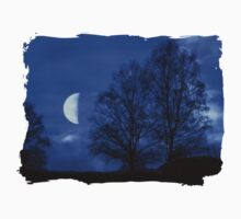 Moon between Trees - JUSTART © Kids Clothes